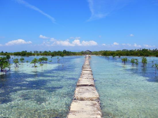 【實習生日記-Shin】離Mactan最近的島- Olango island